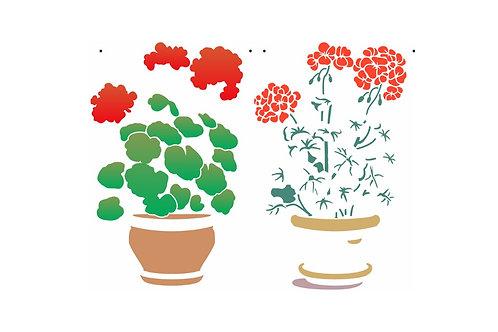 Vaso flores gerânios