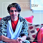 Fish Fox - I Want You To Stay - Single C