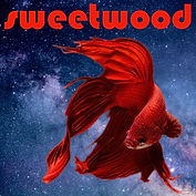 Sweetwood_Right Beside You_FINAL_1500.jp