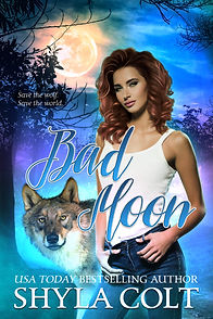 Bad Moon Ebook Cover Full Size.jpg