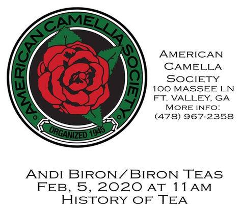 Talk at Am Camella Society