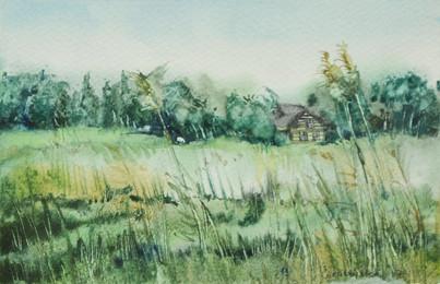 Summer field 19x13 cm