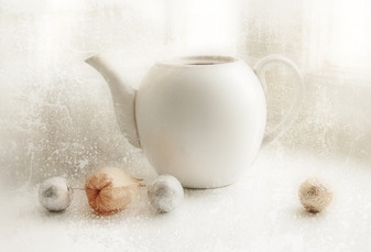 The white teapot and physalis