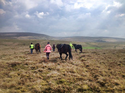 Out riding in the wales hills