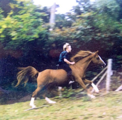 Stormy galloping