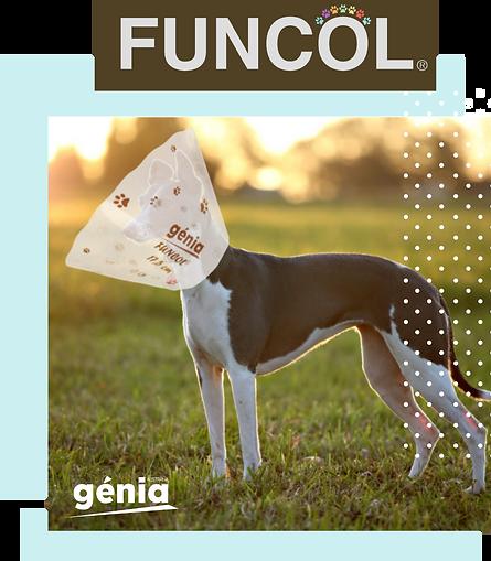 Funcol photo dog 17.5 cm.png