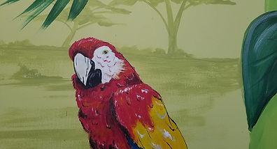 bird in dorr.jpg