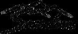Логотип компании Snowlines