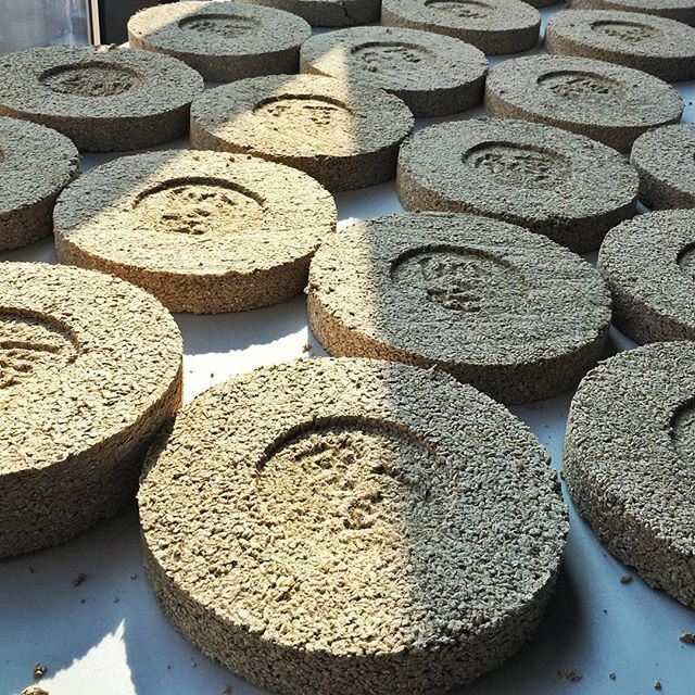 Some other types of grains for nuruk rice, millet and mung beans.