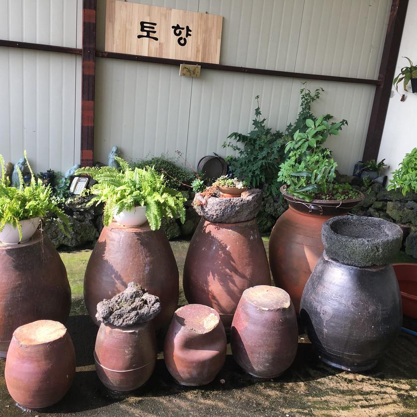 Noggos Tears winery Jeju