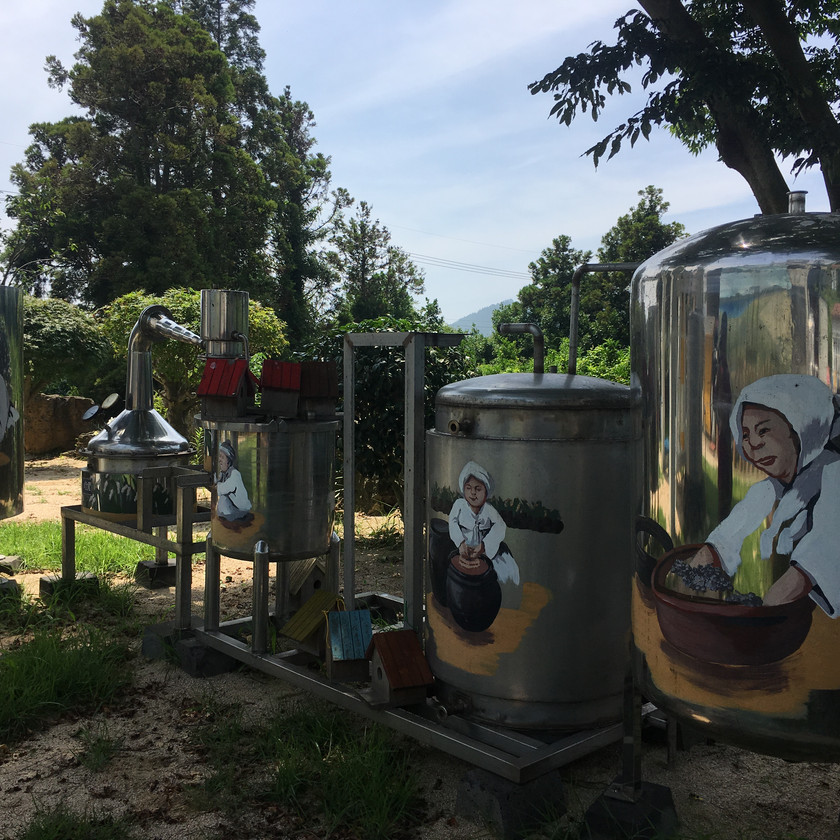 The Jeju Saemju brewery has tastings of traditional Korean Jeju style alcohol