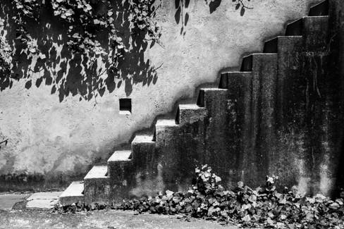 Steps in CDMX