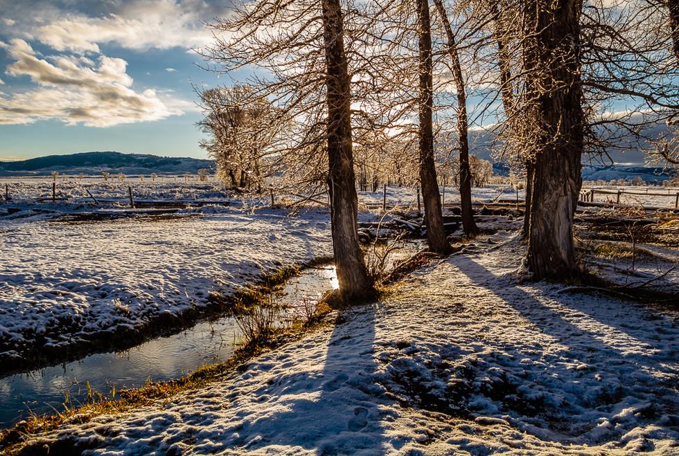 On a Mountain Stream-2.jpg