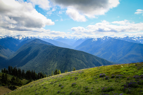 Olympic Mountains 4