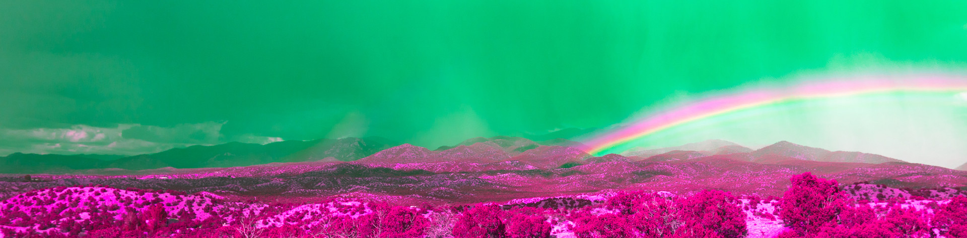Rainbows Art-24.jpg