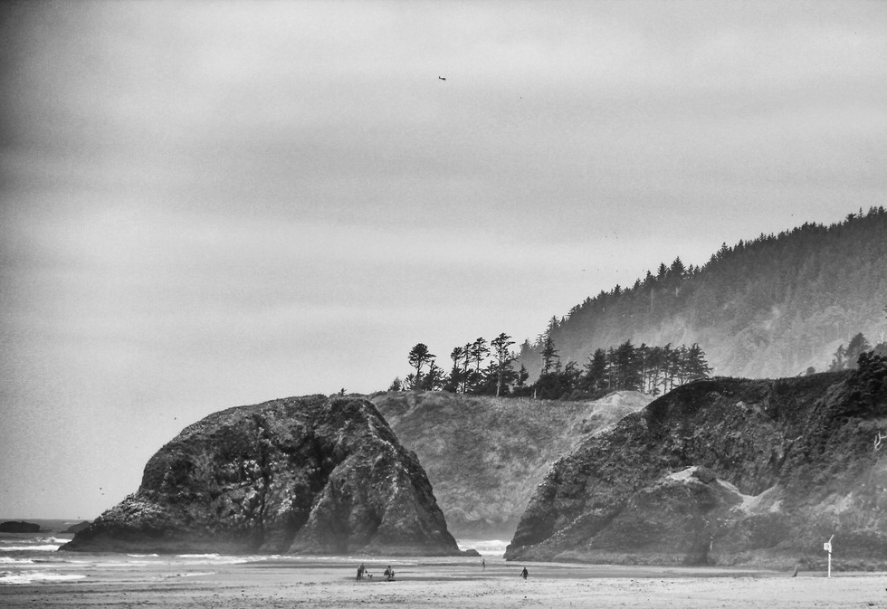 Oregon's Pacific Coast 1