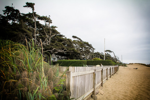 Fence and House on the Pacific