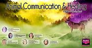 Animal Communication July.jpg