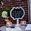 Thumbnail: The Scallop Chalkboard