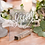 Thumbnail: Bride & Groom Acrylic Signs
