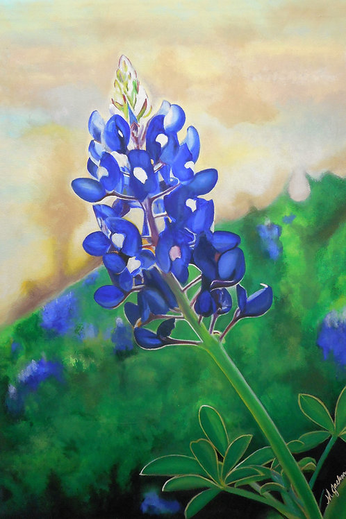 """The BLUEBONNET"" - Giclee Print on Canvas"