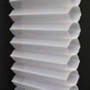 PLS360-001 Cotton