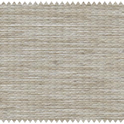 B1003
