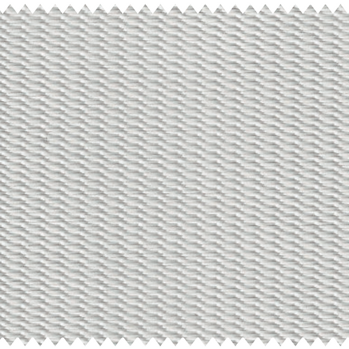 B1001