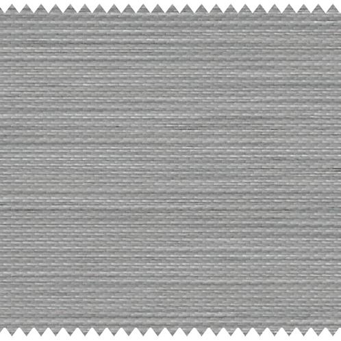 BL2004