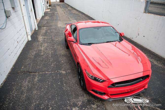 2016 Mustang GT Enhancement + Elite Nano Coating