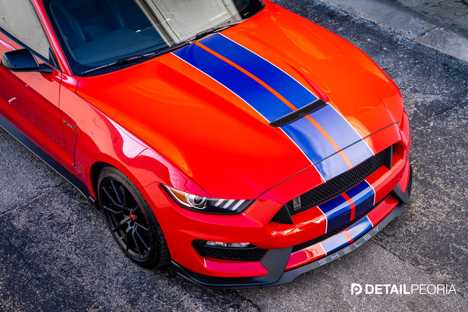 2016 Ford Mustang GT350 - Elite Paint Enahancment, Clear Bra, Ceramic Coating