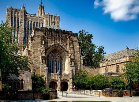 The Progressive Racism of the Ivy League