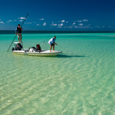 TravelAnne Video Favorite!              A Fly Fishing Dream!             Andros, Bahamas