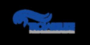 Logo Troiareuke_text blå Confidence for