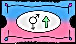 GenderT.png