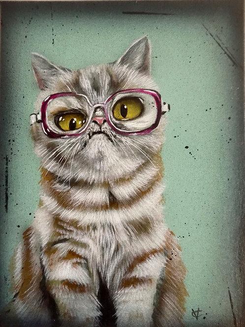 Deidre's cat