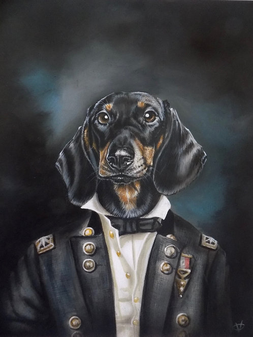 The Distinguished Dachshund