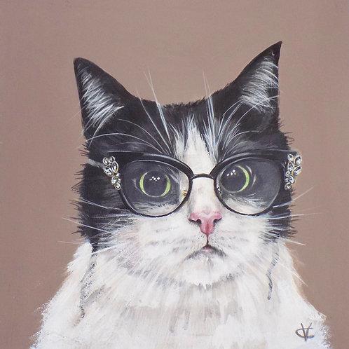 Mitsy the cat