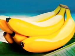 Education and Voice: How Peruvians improved their lives selling fair trade bananas