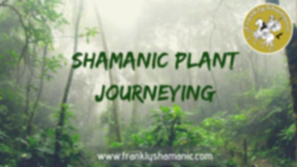 Shamanic Plant Journeying