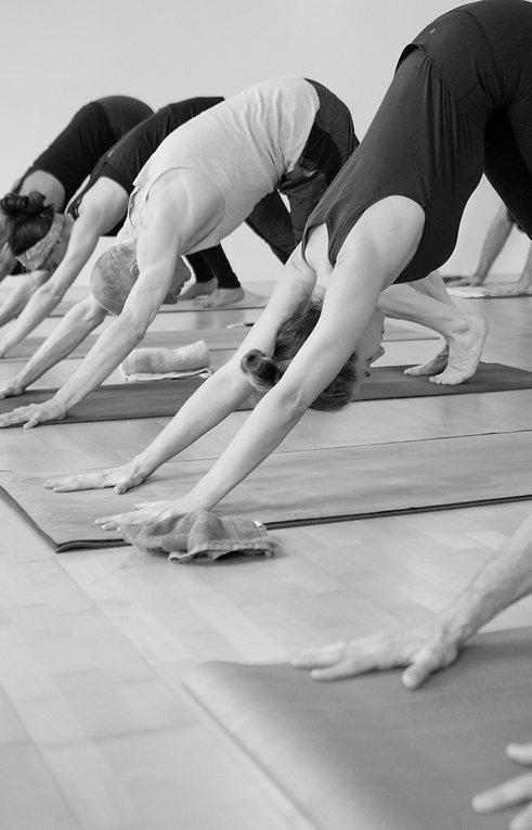 Yoga Source - Ashtanga Yoga Lausanne - Beginner - Yoga for Beginners