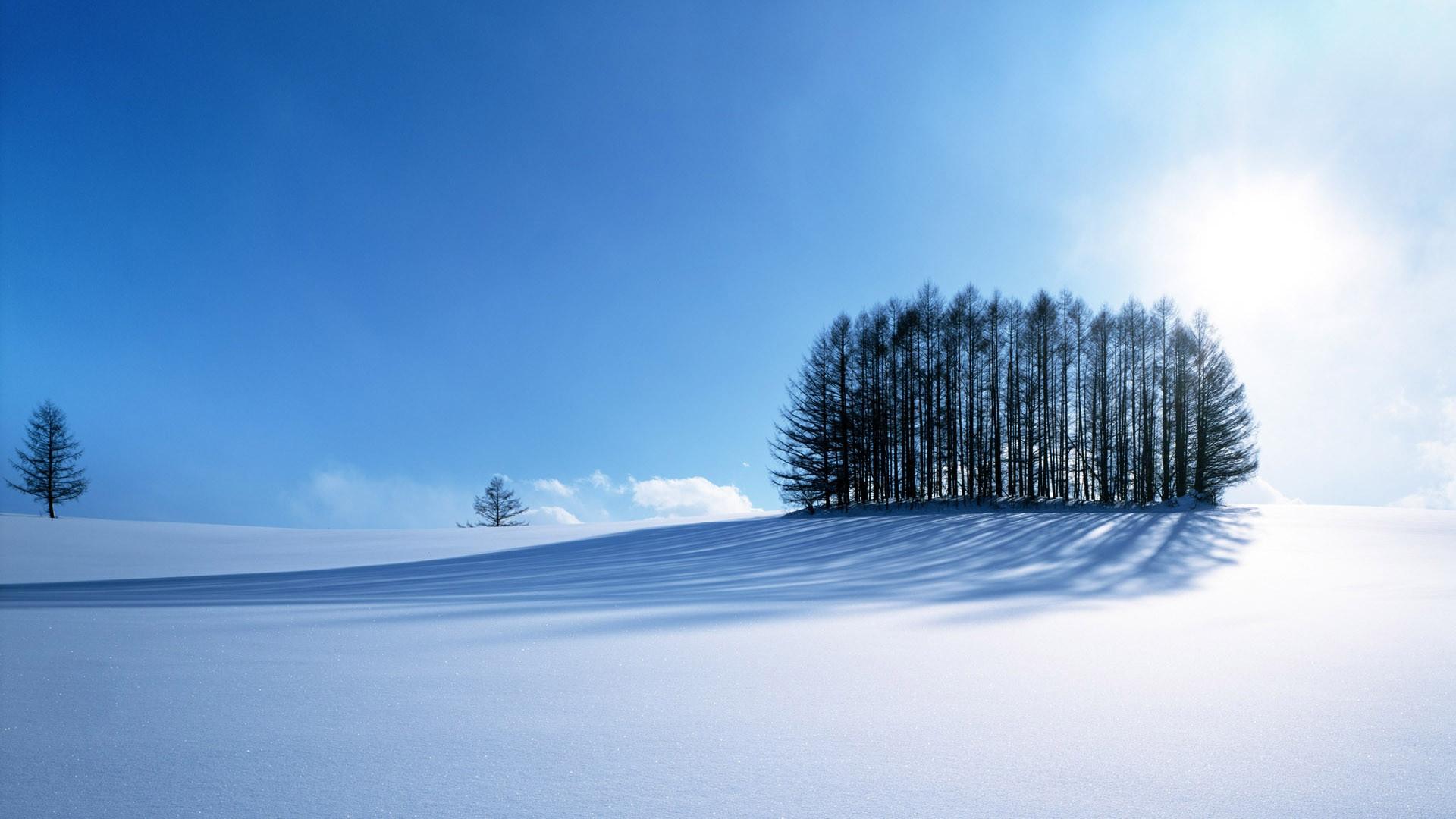 ws_Winter_1920x1080 (1).jpg