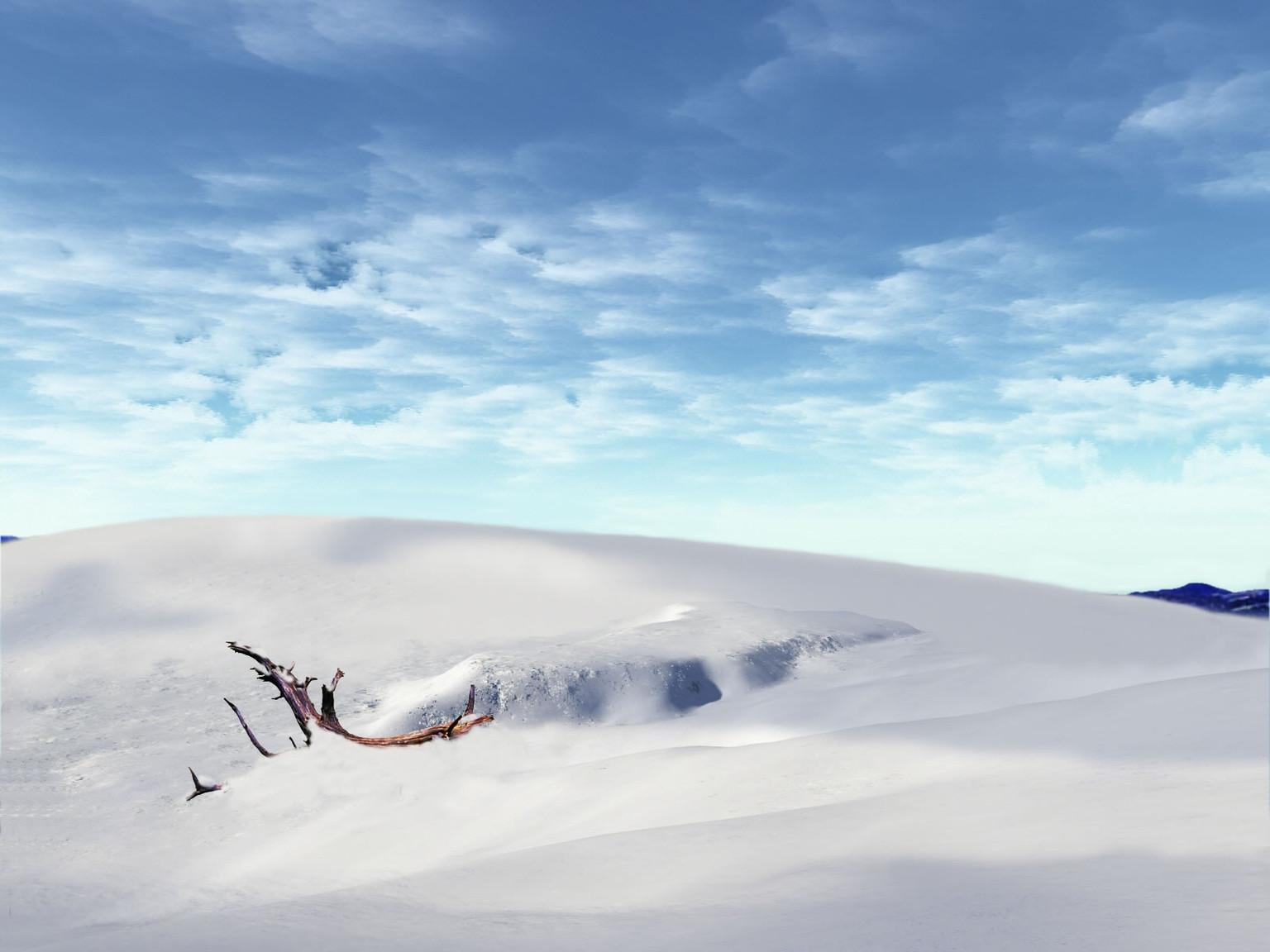 ws_Winter_wonderland_1600x1200.jpg