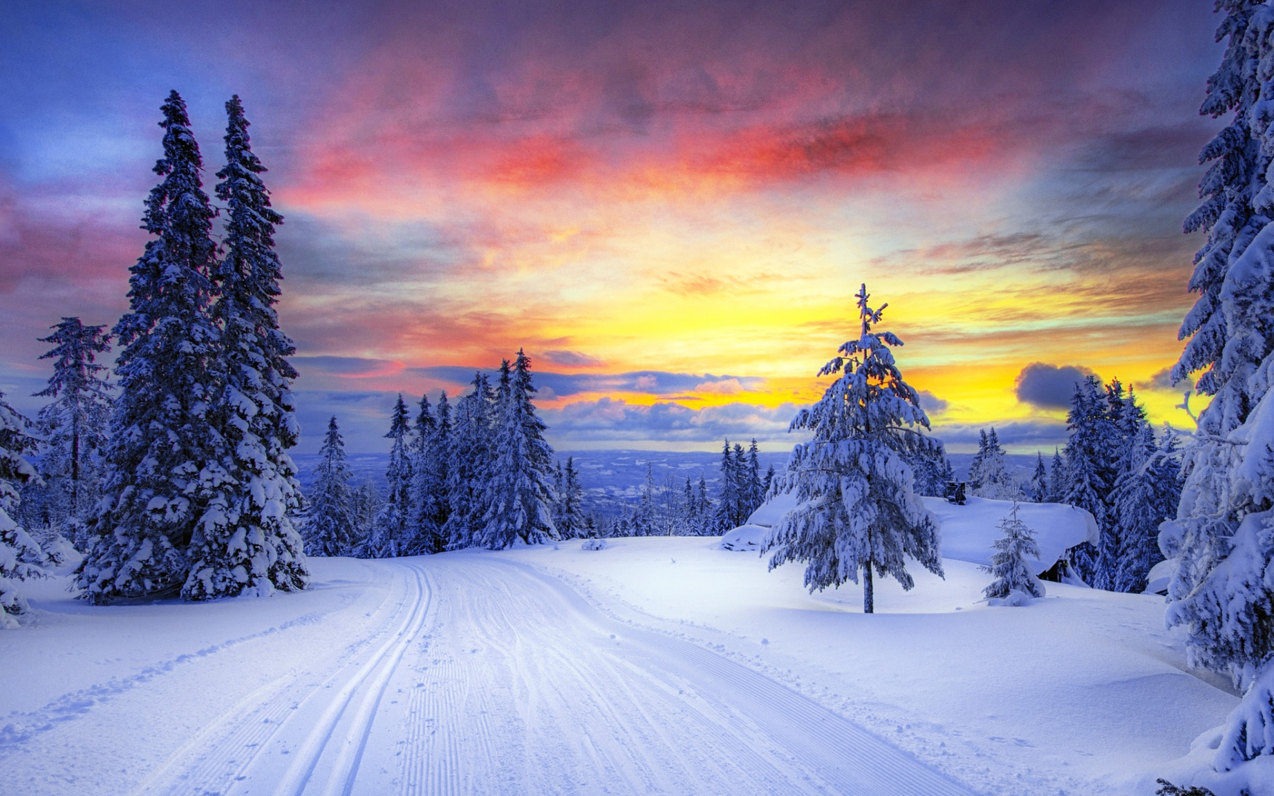 ws_Winter_Trees_Snowy_Road_Sunset_1920x1