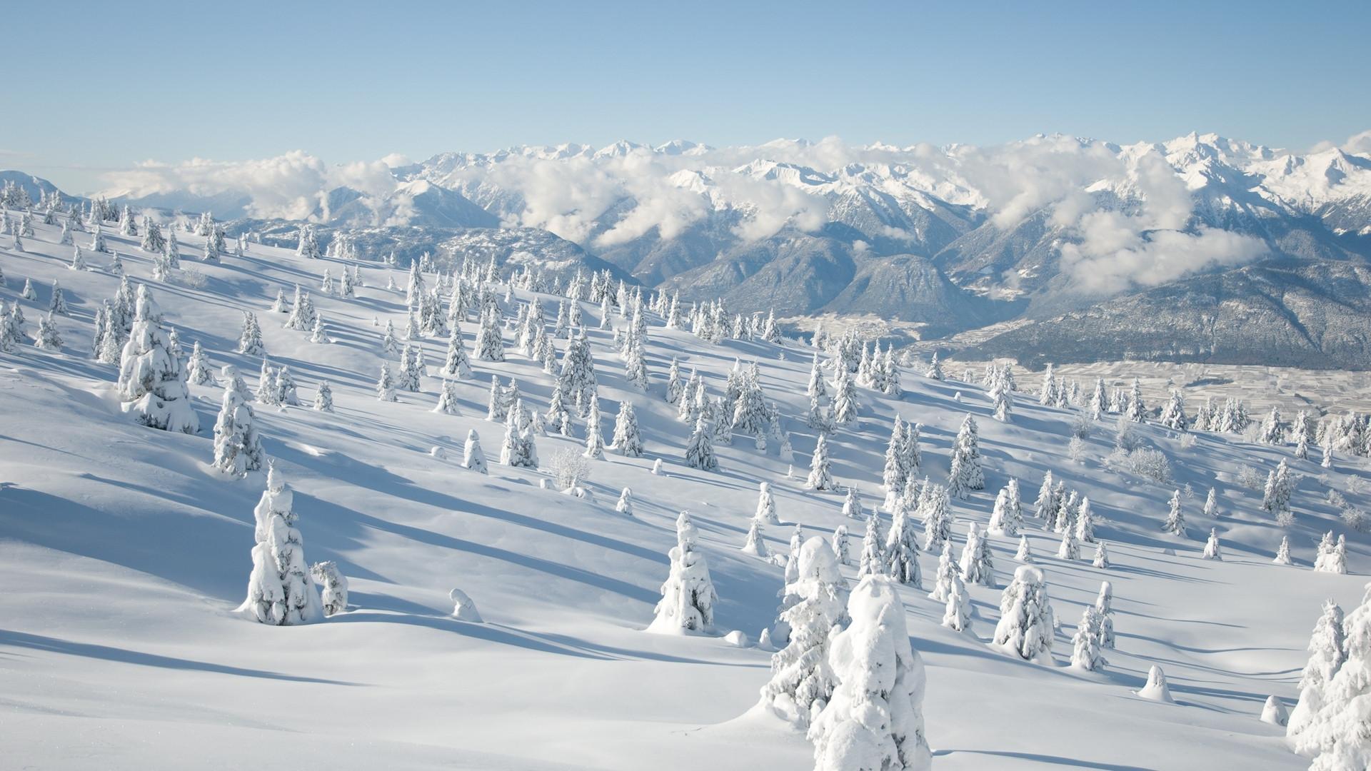ws_Winter_Land_Trees_&_Mountains_1920x10