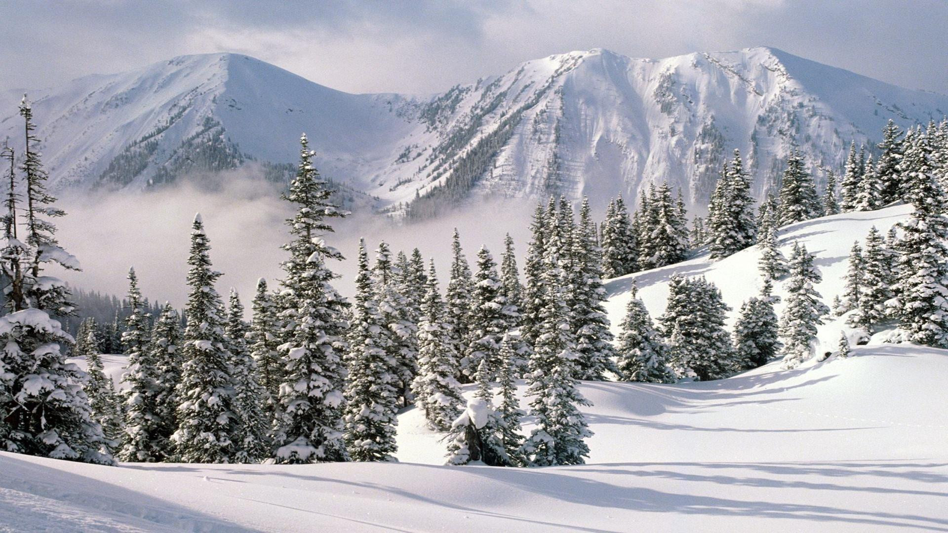 ws_Winter_1920x1080.jpg