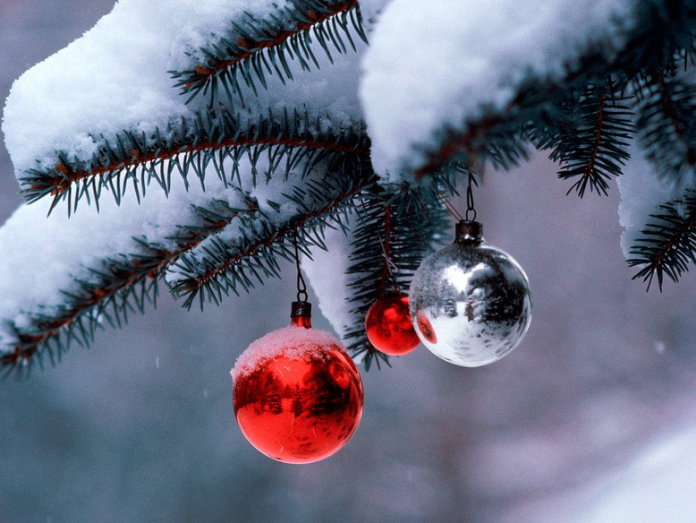 ws_Winter_Globes_1600x1200.jpg