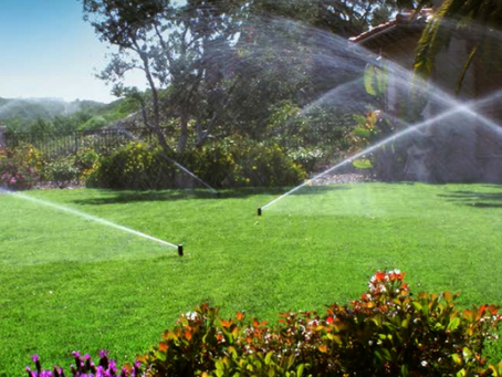 Take Your Lawn from Green…to Greenest!
