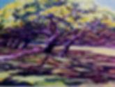 Monkeypod150_edited.jpg