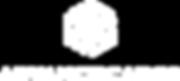 AdvanceCargo_logo-1.png
